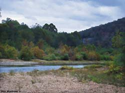 Buffalo River... Click here to see the image larger