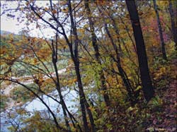 Roaring River State Park...Click here to see the image larger