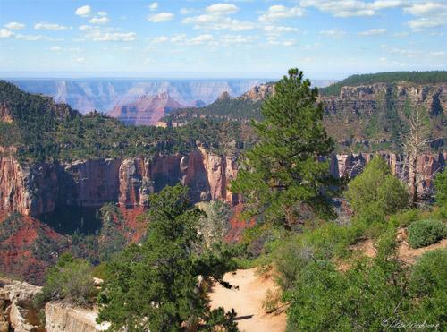 Grand Canyon at the North Rim
