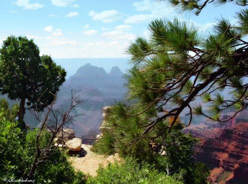Canyon Trip North Rim