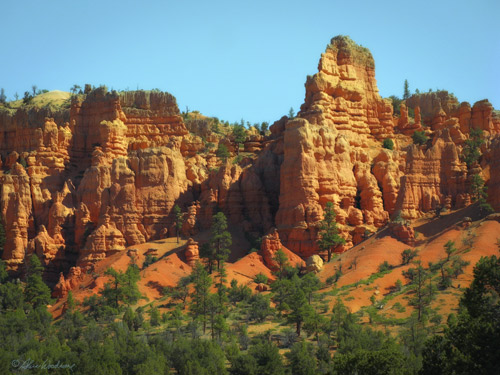 Red Canyon Area