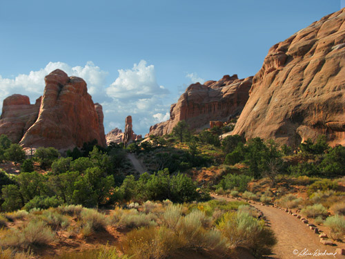 Trail to Landscape Arch