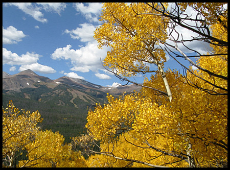 mountains, aspen, and a great October sky