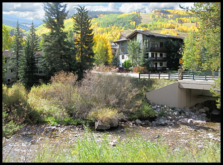 Gore Creek, a riparian/stream ecosystem in the heart of Vail