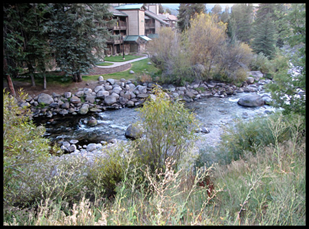 a Creek in Aspen