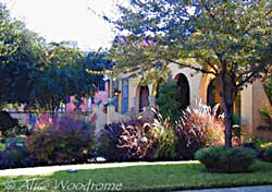 The ornamental grasses adorning this house in the King William District looks nice, doesn't it? - click to view picture large