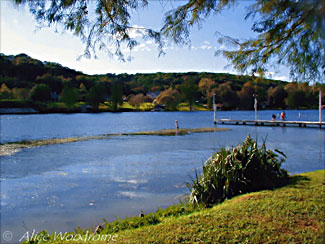 Lake Austin at Emma Long Park -- click to see larger version