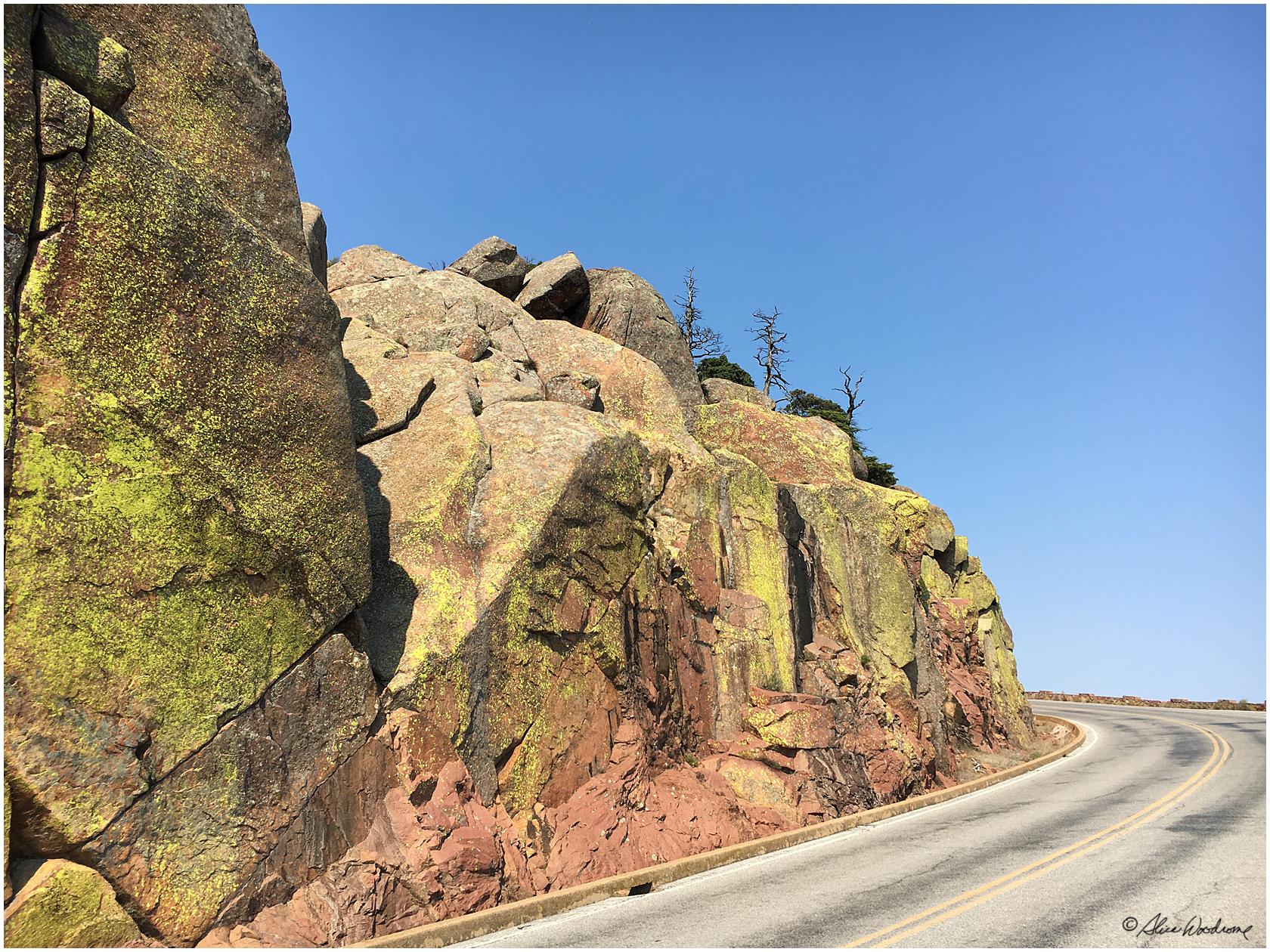 On the road on Mount Scott