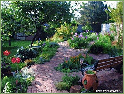Garden second week in May