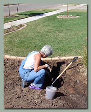 Alice Digging