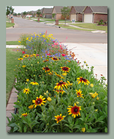 Driveway Prairie Garden