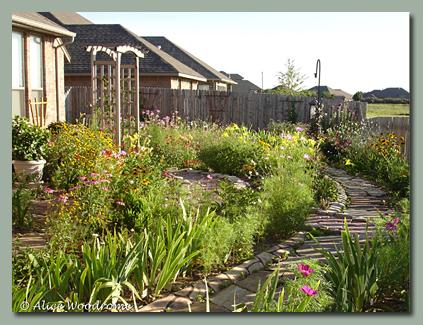 Mid June Back Garden