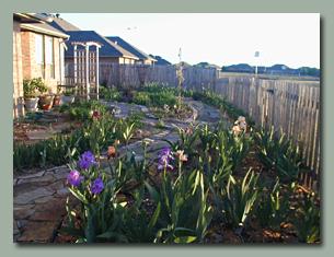Backyard, Mid April