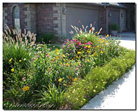 Driveway Flower Bed