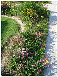 sidewalk flowerbed